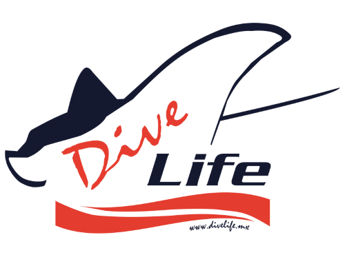 Divelife