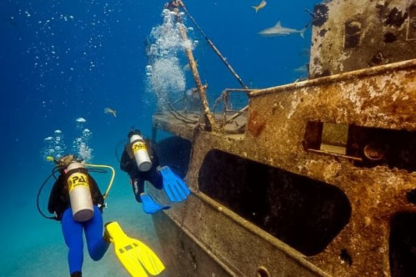 Dive Tour Shipwreck
