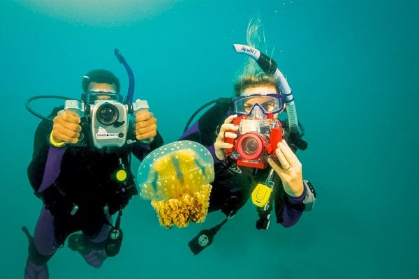 PADI Aventure Dive Course Photography Mexico