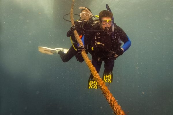 Starting the dive Divelife Playa del Carmen Mexico