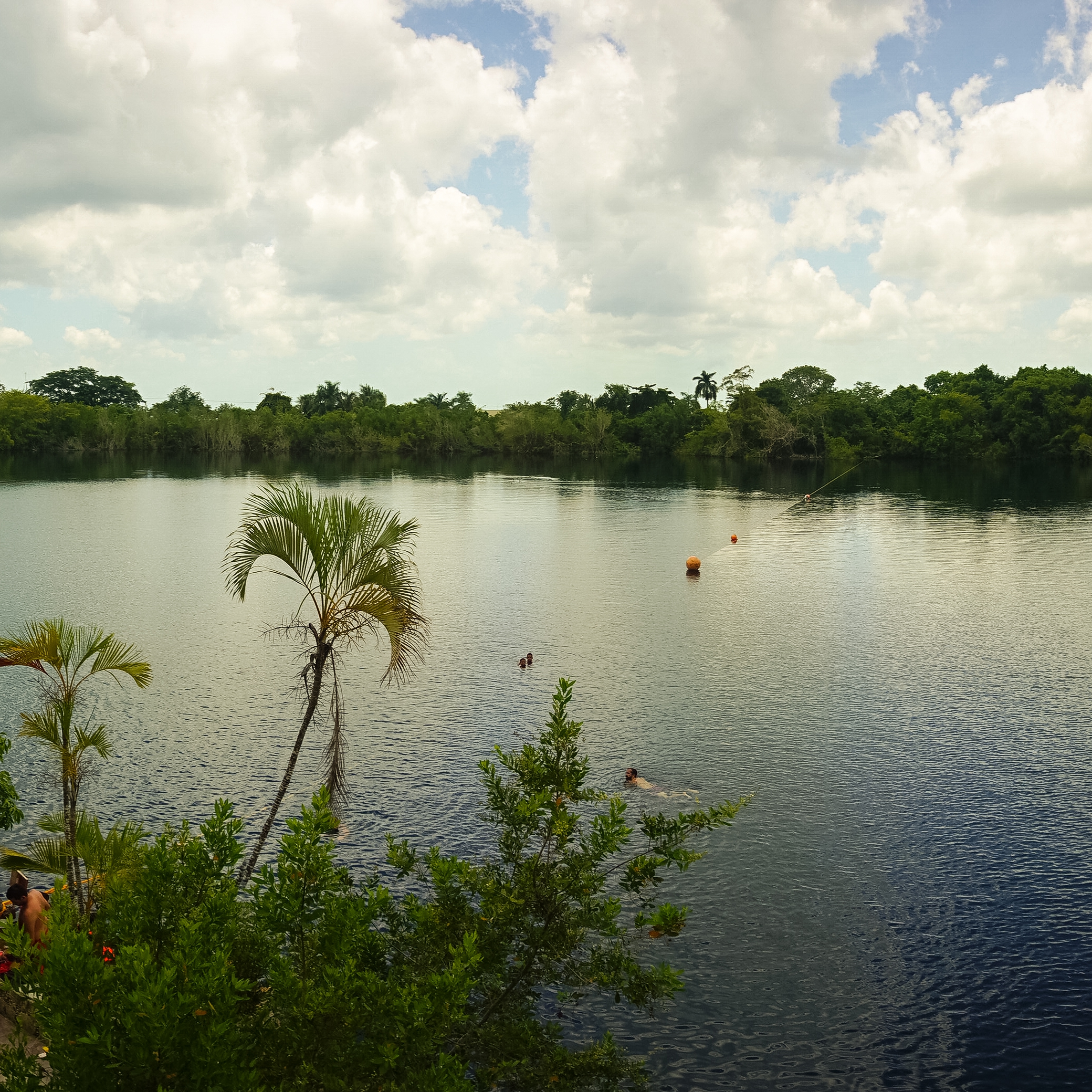 Mahahual: Cenote Azul Diving